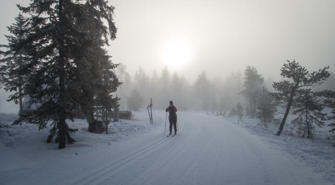 Långberget – ett Vasalopp på längdskidor