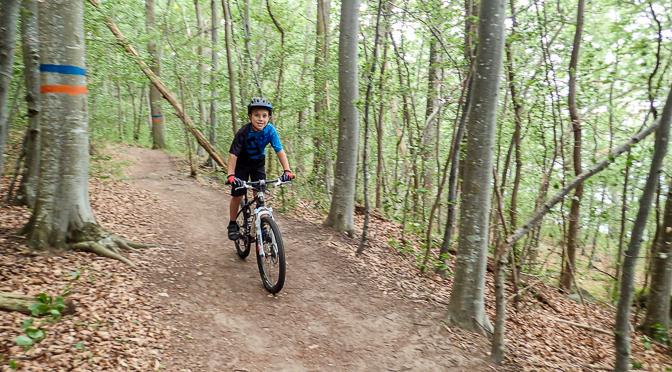 Omberg – på cykelsemester